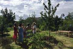 jedly-park-Dalibor-Levicek1